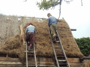 Thatching the roof of a Colonial house at Plimoth Plantation