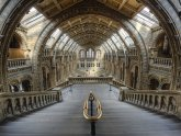 Natural History Museum architecture